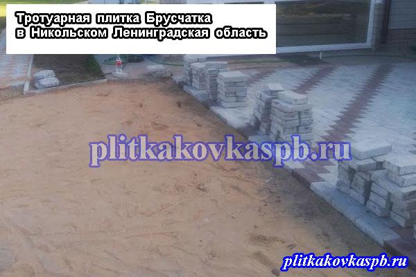 Тротуарная плитка Никольское Ленинградская область: пример укладки, фото